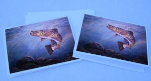 Brown trout notecards