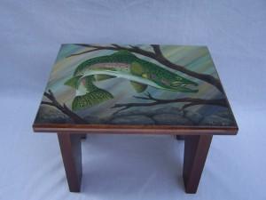 Rainbow trout stool